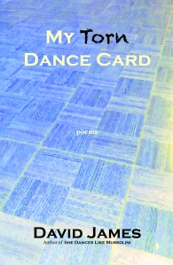 MTDC - Dance Floor Cover (REV 2)